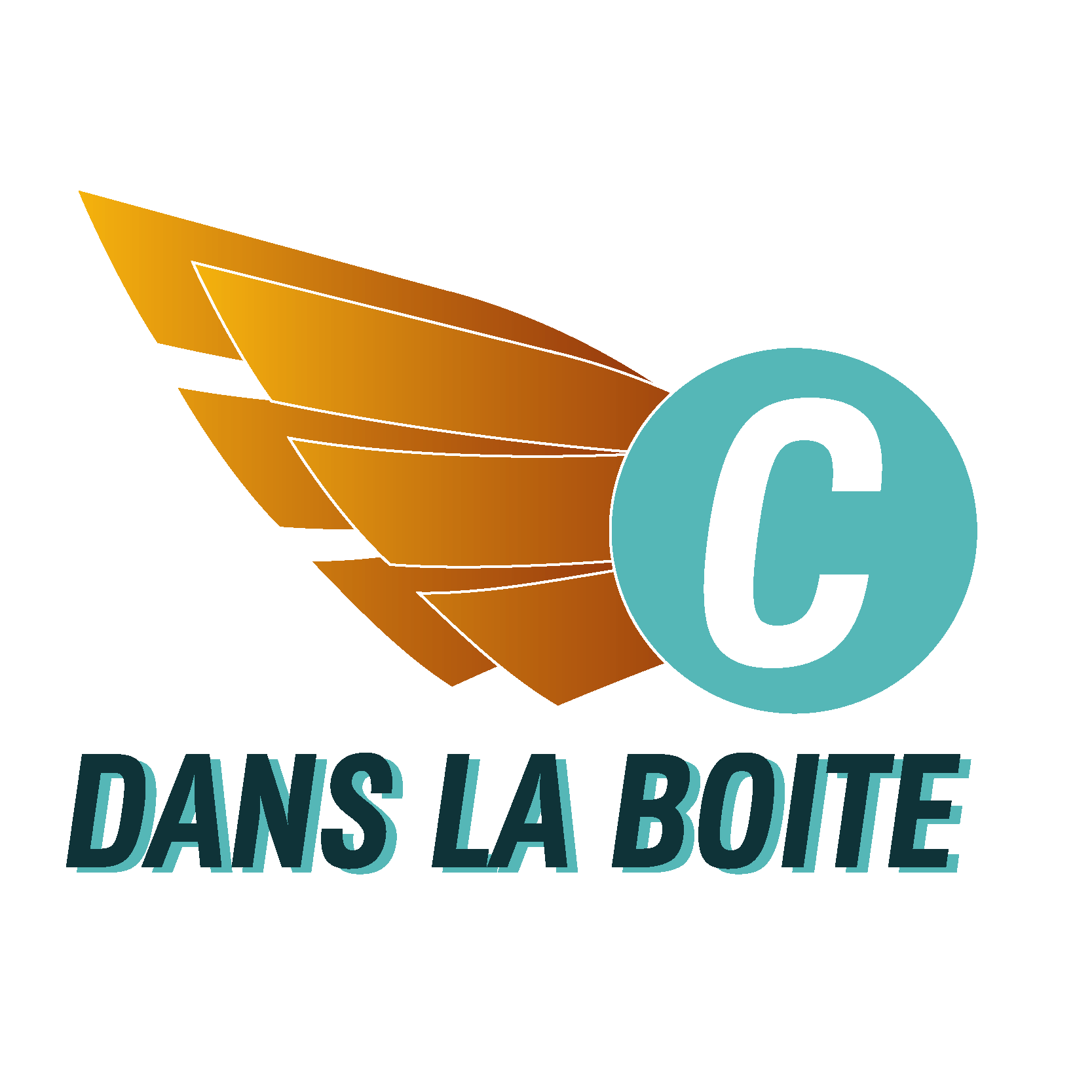 Cdanslaboîte by DOI